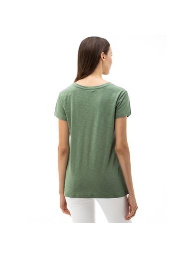 Nautica Tişört Yeşil